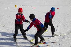Aus- und Fortbildung DSV-Schulsportkonzept