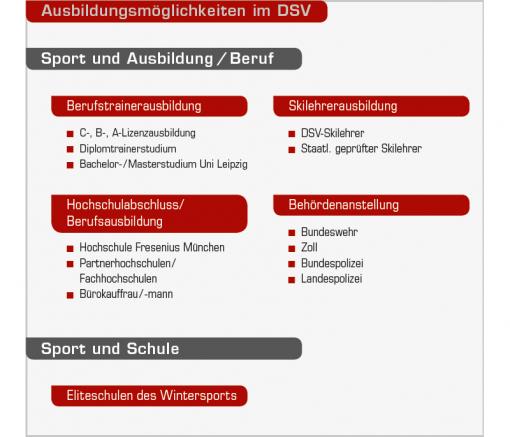 Grafik Ausbildungsmöglichkeiten im DSV