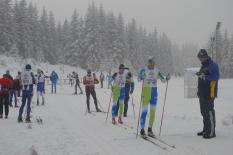 Offene Landesmeisterschaften 2017 im Skilanglauf der Senioren im NSV und SVSA