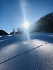 DSV-Skischulsommervents