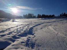 Symbolbild Skilanglauf