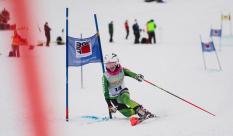 Telemark-Weltcup, Oberjoch, Calssic, 25.01.2021