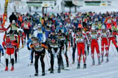 DSV Skilanglaufserie
